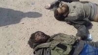 Felluce operasyonunda yüzlerce terörist etkisiz hale getirtildi