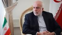 Komşu ülkelerle ekonomik ilişkilerin güçlendirilmesi İran'ın önceliğidir
