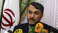 Abdullahiyan: Suriye buhranının kökünde siyonist İsrail'in güvenliği yatıyordu