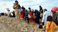 Musul şehri mültecileri sayısı 600 bini aştı