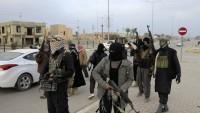 """IŞİD teröristleri Irak'ın """"el-Kaim"""" şehrinden geri çekildi"""