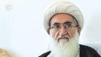 Ayetullah Hemedani: İslam alimleri, düşmanların fitnecilikleri karşısında birleşmeli