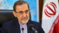 Velayeti'den İran'ın uluslararası arenadaki rolüne vurgu
