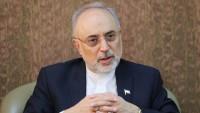 İran Atom Enerjisi Kurumu başkanı Ali Ekber Salihi: Nükleer anlaşma sorgulanırsa İran buna uygun bir şekilde tepki gösterecektir