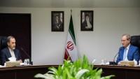 Velayeti: ABD, Irak ile Suriye'de büyük bir hezimete uğradı