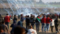 Filistin'de İslami ve yurtsever hareketlerinden çağrı