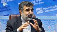 Kemalvendi: Nükleer anlaşma, İran yararlanmadan devam edemez