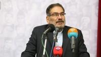 Ali Şemhani: ABD ve siyonist İsrail'in bölge ülkelerini parçalama siyasetleri yenilgiye uğratıldı