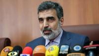 Kemalvendi: Eğer Avrupalılar İran'ın çıkarını garanti etmezse kısıtlamaya gitmenin manası kalmaz