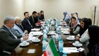 Cevad Laricani: İran Afganistan halkının hamisidir