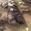 Suudi Arabistan'ın güneyinde patlama: 10 asker öldü ve yaralandı
