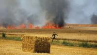 Uçurtmalar İsrail'de 17 yangına daha sebep oldu