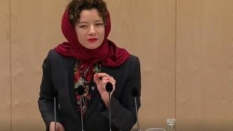 Avusturyalı kadın parlamenterin başörtülü protesto eylemi