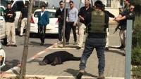 B'Tselem Örgütü: Eylem gerçekleştirme hazılığı bahanesiyle Filistinlilerin öldürülmesi savaş suçudur