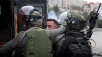 İşgalci İsrail Askerleri Batı Şeria'da 12 Filistinliyi Gözaltına Aldı