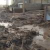 İran'da Sel Felaketinde Can Kaybı 67'ye Yükseldi