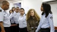 AB'den Siyonist İsrail'e Filistinli çocuklara gözaltı tepkisi