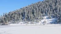 Abant Gölü buz tuttu