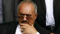 Yemen Halk Komiteleri: Abdullah Salih halk komitelerini arkadan hançerledi