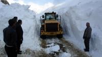 Doğu Anadolu'da yoğun kar yollar kapattı