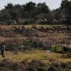 İşgal Güçleriyle Yahudi Yerleşimcilerin Saldırıları Sonucu 69 Filistinli Yaralandı