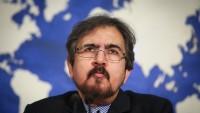 Behram Kasımi Mısır ve Suudi Arabistan'ın İddialarına Tepki Gösterdi
