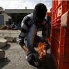 Batı Yaka'da Dün Siyonistlere Yönelik 40'ı Aşkın Eylem Gerçekleştirildi