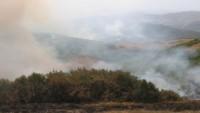 Tunceli'de 6 bölgede başlayan orman yangınları devam ediyor