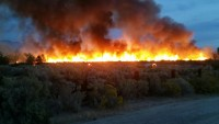 ABD'nin Nevada Eyaletinde 22 ev yandı