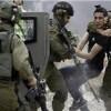 Siyonist İşgal Güçleri El-Halil'in Güneyinde Filistinli Bir Genci Gözaltına Aldı