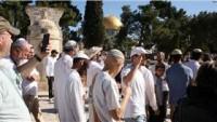 Haziran Başından Bu Yana 994 Siyonist Mescid-i Aksa'ya Baskın Düzenledi