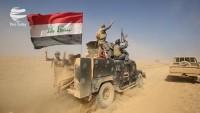 Haşdi Şabi ile IŞİD teröristleri arasında Tikrit'te çatışma