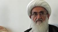 Ayetullah Nuri Hemedani: Erbain siyasi bir harekete dönüşmüştür