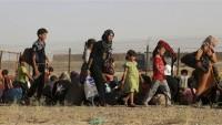 Felluce halkı IŞİD'den kaçıyor