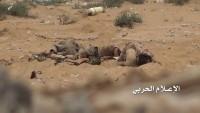 Yemen Hizbullahından Cuf Kenti Kırsalına Sızmaya Çalışan İşgalcilere Ağır Darbe
