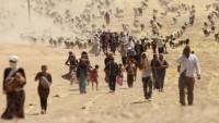 Ezidi Birlikler Haşdi Şabi'ye Bağlanacak