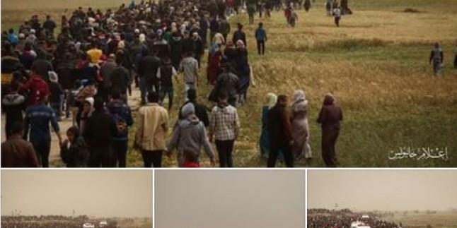 """Gazze Sınırında Düzenlenen Barışçıl """"Milyonluk Toprak ve Dönüş Yürüyüşü"""" Gösterilerine Müdahalesinde 2 Filistinli Şehid Oldu 254 Filistinli de Yaralandı"""