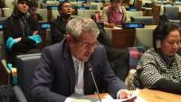 İran'ın BM Temsilcisi: Myanmar'daki cinayetler bir an önce durdurulmalı