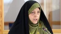 İran Çevre Sağlığı Kurumu Başkanı Paris İklim Konferansı'nda Konuştu