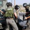 Siyonist İsrail güçleri 8 Filistinliyi gözaltına aldı
