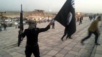 Musul'da 16 kişi köprüden atılarak idam edildi