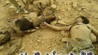 Foto: Suriye Ordusu tarafından Deyrezzor Askeri Havalimanı civarında öldürülen onlarca IŞİD teröristinden birkaçı…