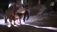 Video: Suriye Ordusu ve Lübnan Hizbullahının Bombardımanı Sonucu Yaralanan IŞİD Teröristleri, İkinci Bir Patlamayla Murdar Oluyorlar