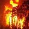 Kosova'da orman yangını, evler tehlikede