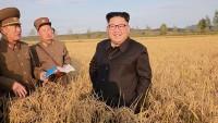 Kuzey Kore, Japonya'yı 'nükleer bulutla' tehdit etti