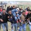 Lübnan'da Halk Filistin'e destek gösterileri düzenledi.