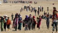 Suriye'nin Kuzeydoğusunda 37 Mülteci IŞİD Teröristleri Tarafından Öldürüldü