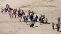 Musul'da son iki gün içerisinde 3 binden fazla sivil evlerini terk etti