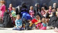 Musul'dan 103 bin sivil, terör örgütü IŞİD'den kaçtı
