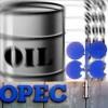 OPEC, İran'ın günlük petrol üretim miktarını 3.9 milyon varil olarak belirledi